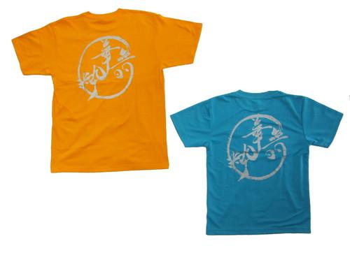 地元岡崎市のよさこいチーム様のTシャツです。 法被もオリジナルで・・・